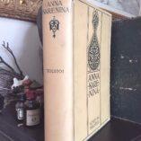 Anna-Karenina-by-Tolstoi-Tolstoy-1914-Illustrated-w-DJ-Haskel-Rare-292060777872-11