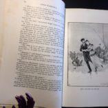 Anna-Karenina-by-Tolstoi-Tolstoy-1914-Illustrated-w-DJ-Haskel-Rare-292060777872-8