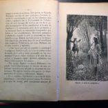 Aventuras-del-Feisimo-Lentejilla-N-Mendez-Bringa-Illustrated-Spanish-1901-292072598674-7