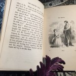 Bible-History-for-the-Least-and-the-Lowest-1854-First-Edition-illustrated-291562843134-8
