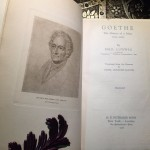 Goethe-Emil-Ludwig-Illustrated-First-Edition-1928-Custom-Leather-Bound-301713714045-4