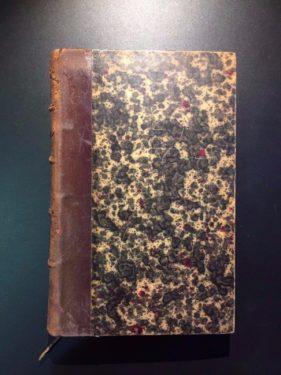 Le-Prhistorique-en-Europe-G-Cotteau-1889-French-Language-Illustrated-302221330772