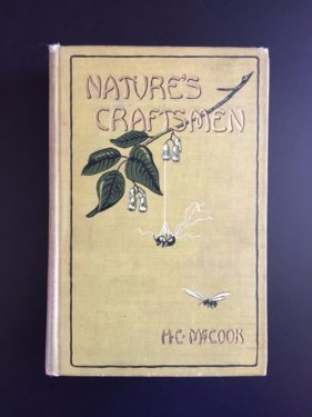 Natures-Craftsmen-Ants-and-Insects-Henry-Christopher-McCook-Illustrated-1907-292064111413