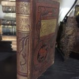 Poems-and-Plays-by-Oliver-Goldsmith-Victorian-Binding-1890-Illustrated-292075751839-9