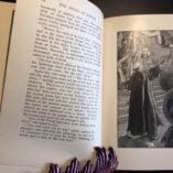 The-Spoils-of-Empire-Francis-Newton-Thorpe-Illustrated-1st-Ed-1903-302272390343-4
