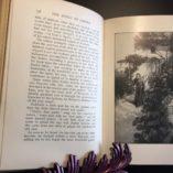 The-Spoils-of-Empire-Francis-Newton-Thorpe-Illustrated-1st-Ed-1903-302272390343-6