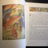 Water-People-Written-and-Illustrated-by-Wilfrid-Swancourt-Bronson-1935-302269283691-3