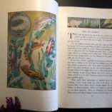 Water-People-Written-and-Illustrated-by-Wilfrid-Swancourt-Bronson-1935-302269283691-4