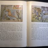 Water-People-Written-and-Illustrated-by-Wilfrid-Swancourt-Bronson-1935-302269283691-7
