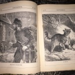 Chatterbox-1876-Victorian-Childrens-Magazine-Collectible-Illustrated-291326419454-6