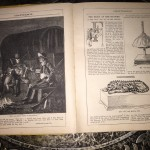 Chatterbox-1906-Childrens-Victorian-Magazine-Beautifully-Illustrated-Vintage-301434883745-4