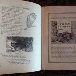 Gems-Of-Life-Short-Stories-For-Children-Alma-White-1933-Vintage-291310076681-6