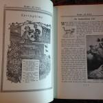 Gems-Of-Life-Short-Stories-For-Children-Alma-White-1933-Vintage-291310076681-7