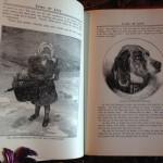 Gems-Of-Life-Short-Stories-For-Children-Alma-White-1933-Vintage-291310076681-8