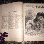 Good-Times-for-Young-People-an-Annual-Miscellany-John-D-Williams-1885-Rare-291326435095-5