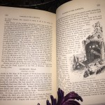 Rambles-in-Rome-Russell-Forbes-First-Edition-1882-Illustrated-Collectible-301486558315-11