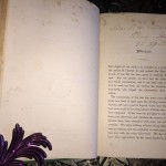 Rambles-in-Rome-Russell-Forbes-First-Edition-1882-Illustrated-Collectible-301486558315-5