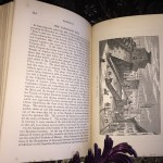 Rambles-in-Rome-Russell-Forbes-First-Edition-1882-Illustrated-Collectible-301486558315-7
