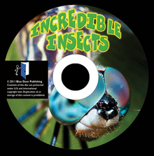 Normal_cd-label-incredible-insects-disc2