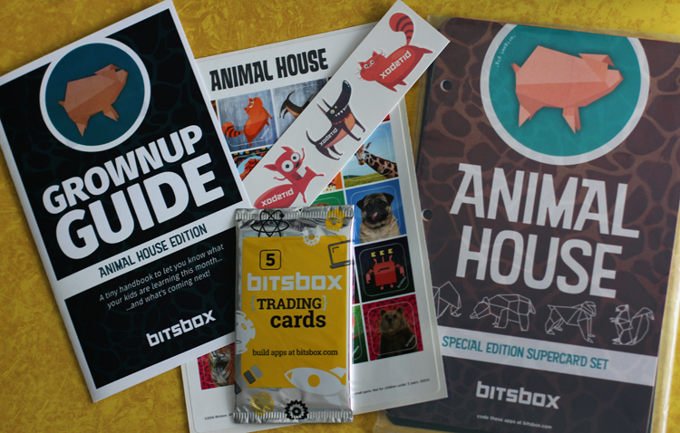 Contents of the Bitsbox coding subscription deluxe box