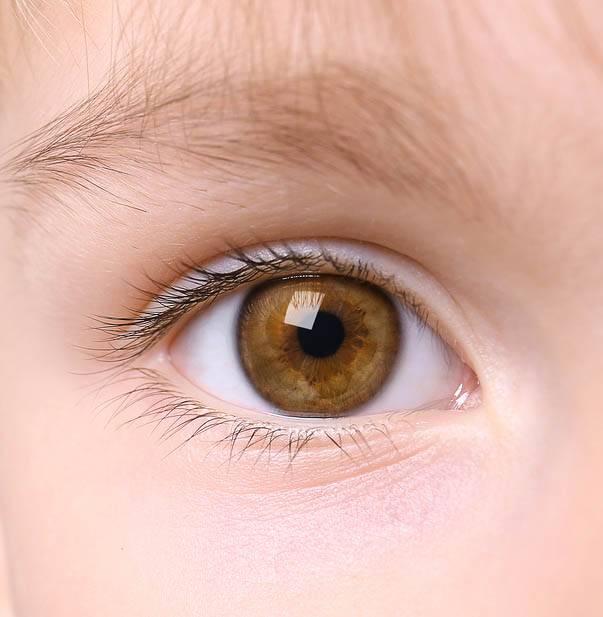Dangers of Myopia Sqr.jpg