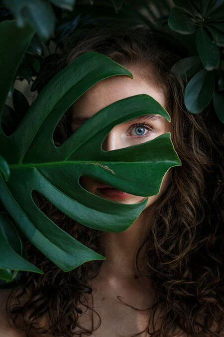 eyes behind the leaf