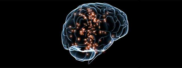 Image of brain and neuro-visual system
