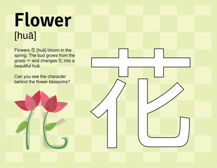Flower-activity-sheet