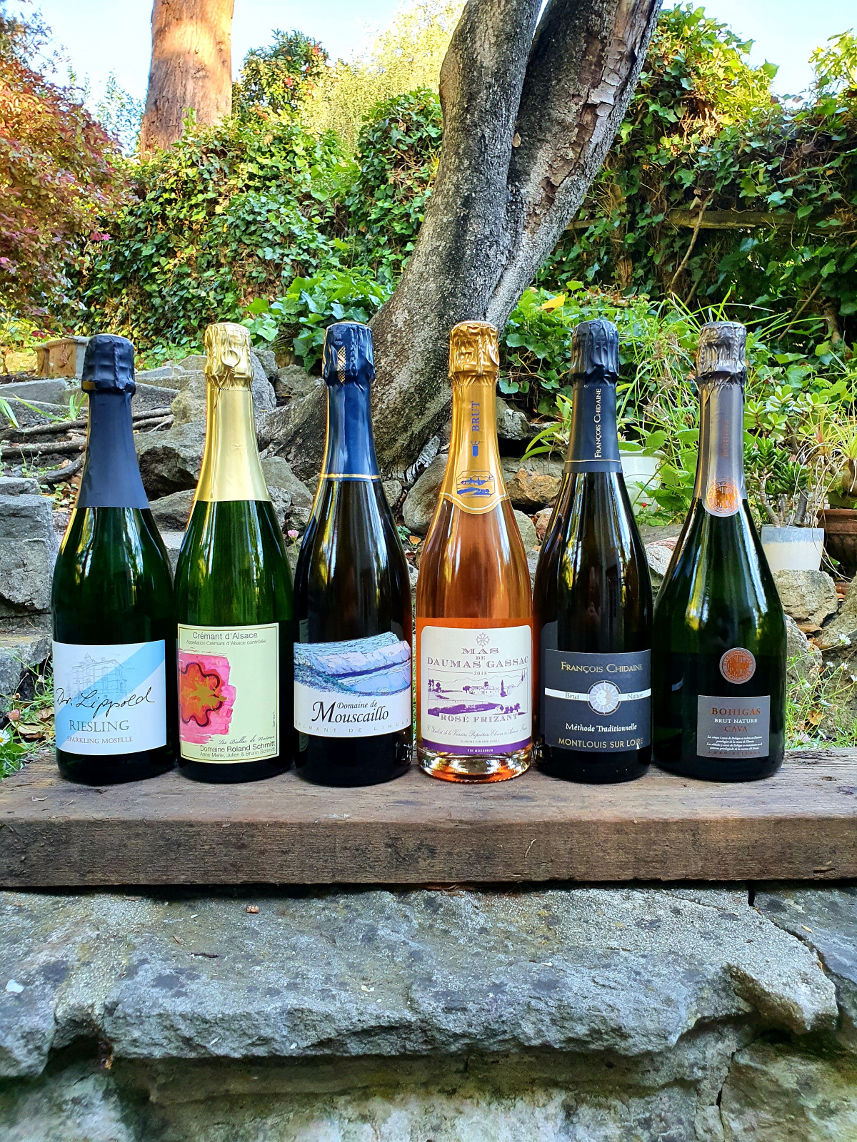 Bubbly Box 6 pk 6 bottles of sparkling wine to drink on a Tuesday or a Saturday! - Beaune Imports