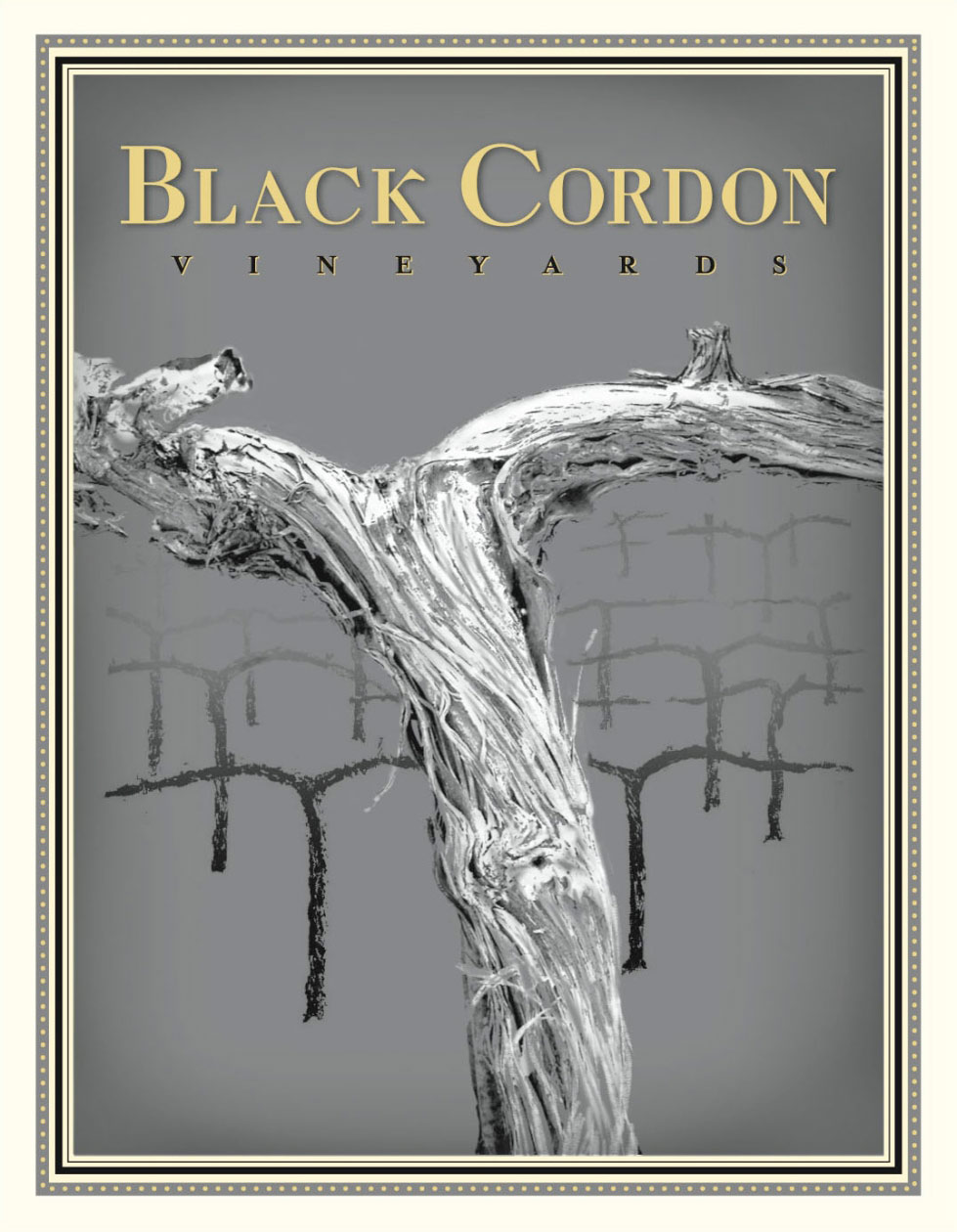 Black Cordon Cabernet Sauvignon Napa Valley 2010, 750ml () from The BPW - Merchants of rare and fine wines.