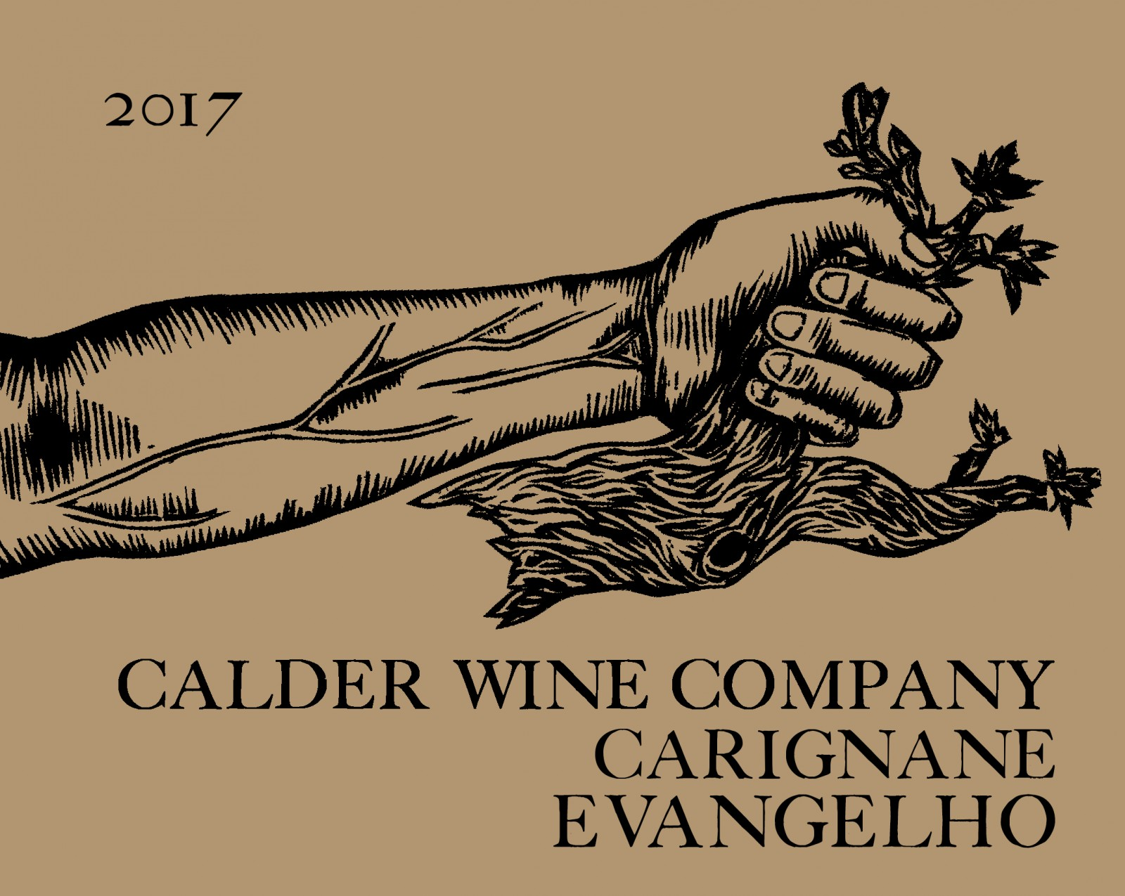 2017 Carignane, Evangelho Vineyard Contra Costa County -