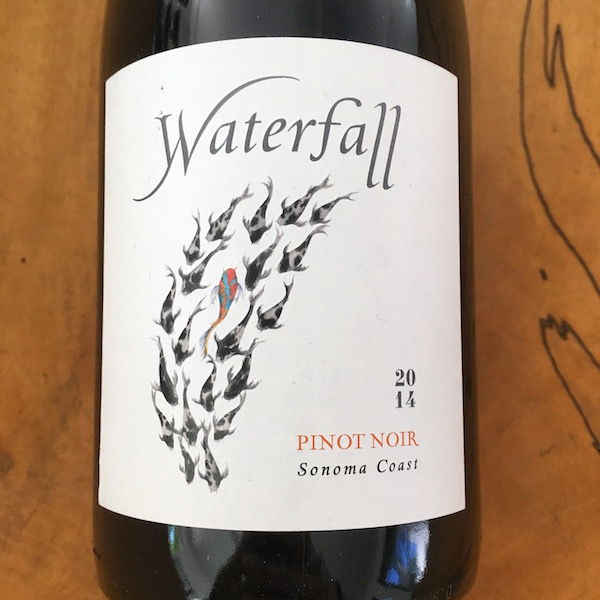 Waterfall Pinot Noir 2014 Sonoma Coast - K. Laz Wine Collection