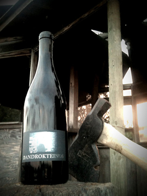 2010 androkteinos hudson vineyards - The Scholium Project