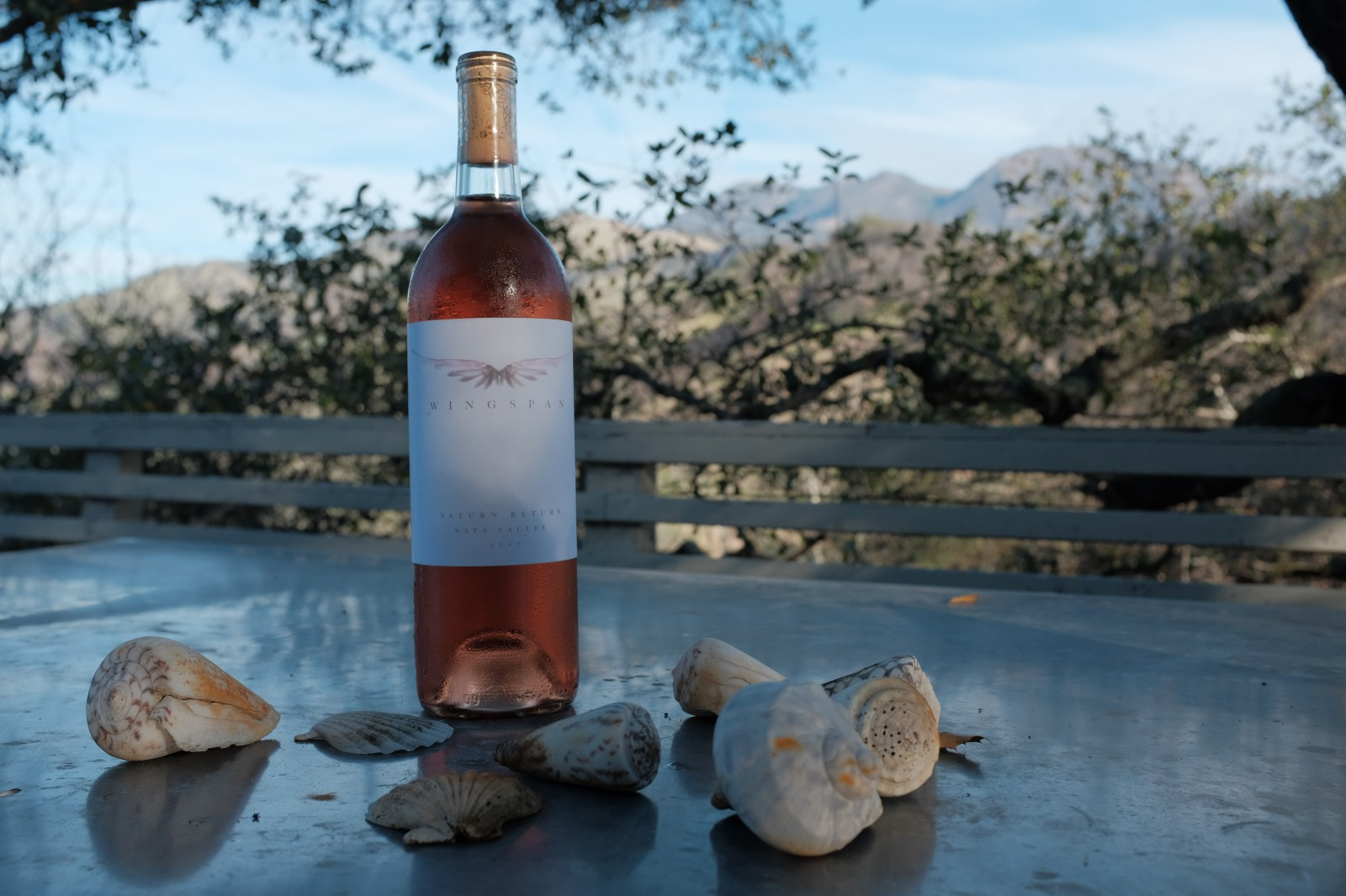 SATURN RETURN Rosé 2017 - WINGSPAN Wine