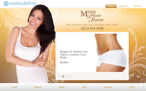 Website for Mesna Plastic Surgery