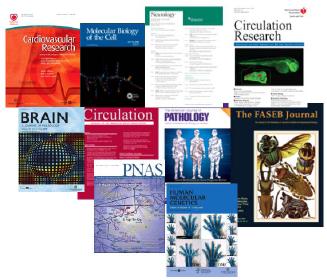 public health peer reviewed journal articles