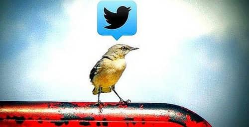 ¡Atención! Twitter se renueva