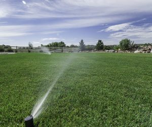 Irrigation-Systems-Rachio-600x500