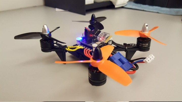 DIY Mini Quadcopter with 3D-Printed Frame and Custom Firmware