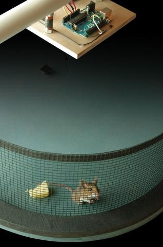Arduino Smart Rat Trap