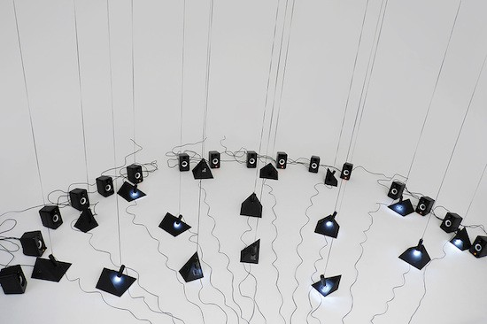 This installation creates a digital orchestra of swamp sounds