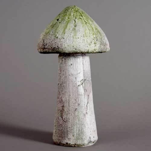 Wild Mushroom 14