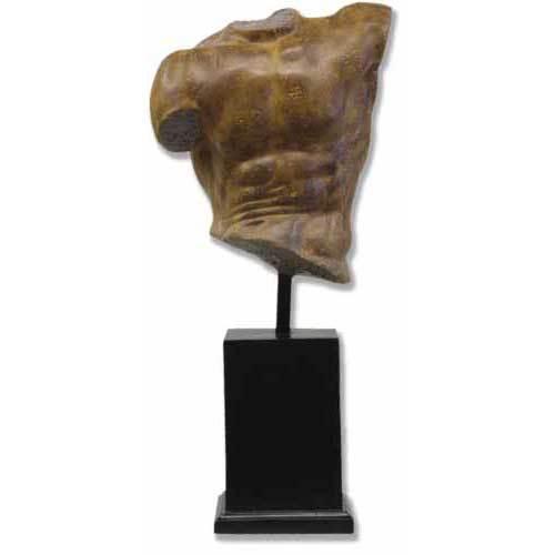 Museum Male Torso 14
