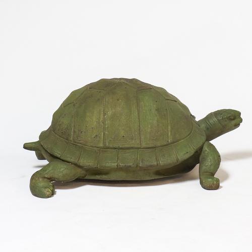 Big Realistic Turtle 12