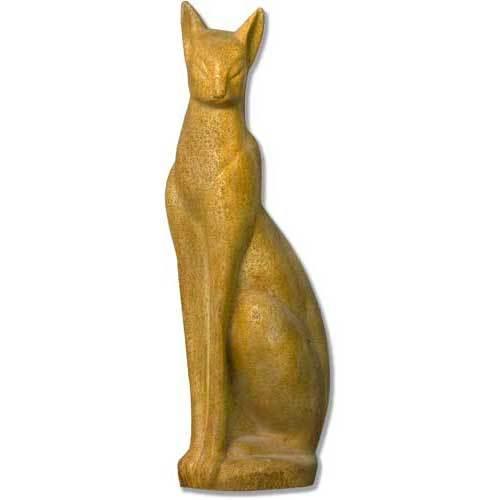 Classy Cat 24