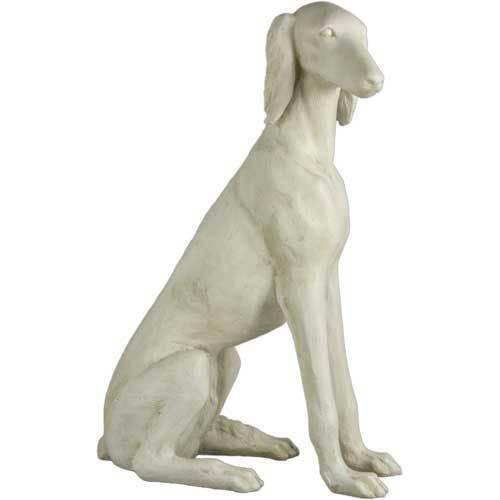 Saluki Dog 39