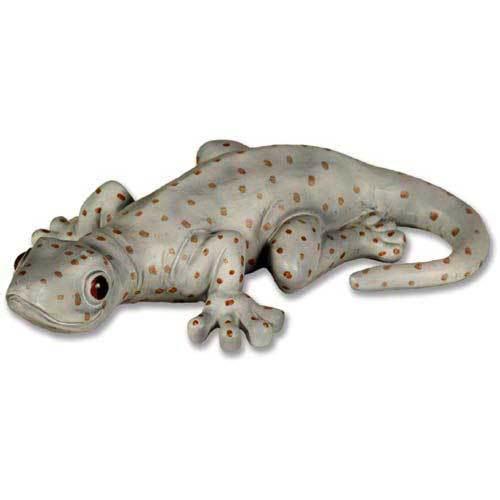 N/A Gecko 12  W
