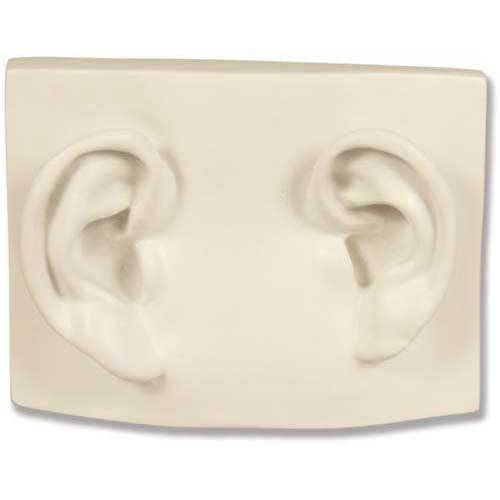 Left/Right Ear On Plaque