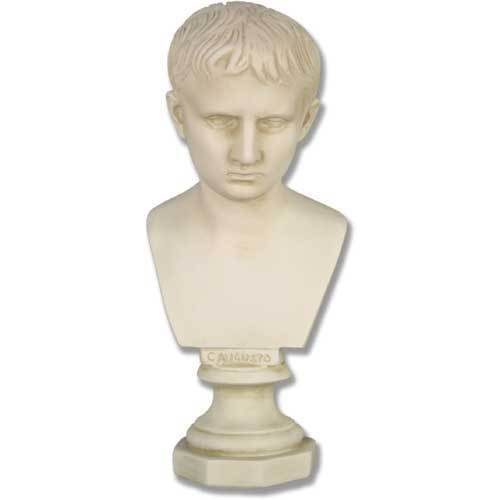 Young Augustus Bust-11.5