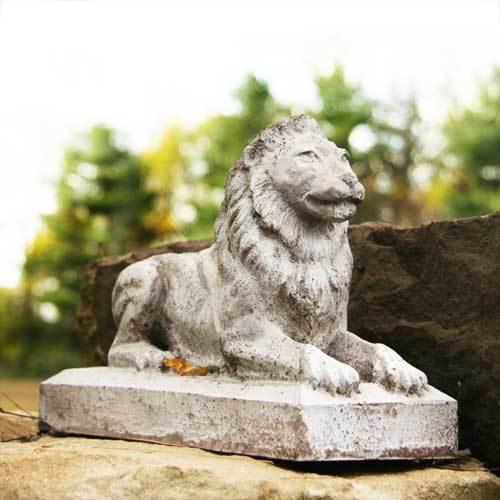 Sentinel Lion-Small